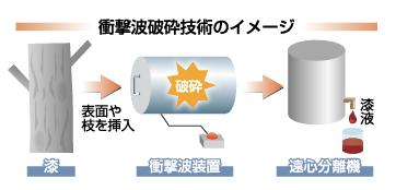 urushi171208.jpg